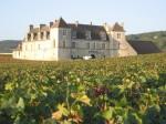 Chateau vignes.JPG