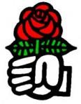 poing_rose.JPG