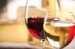 vin,pape,Benoît XVI